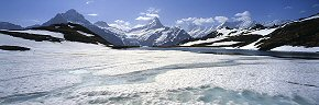 iced lake of bachalpsee