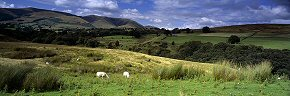 summer at the howgill fells