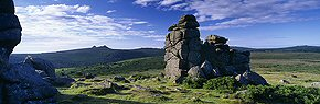 summer light at hound tor