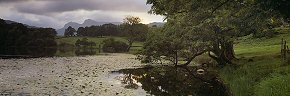 summer evening at loughrigg tarn