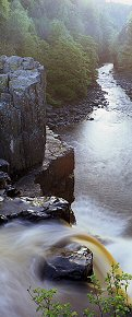 above high force - du0103