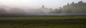 morning mist at castle howard - ym0223