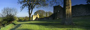 morning shadows, pickering castle - ym0224