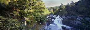 rogie falls, black water