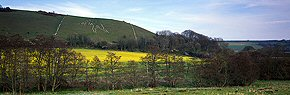 Cerne Abbas Giant & rape field.