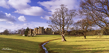 raby castle card