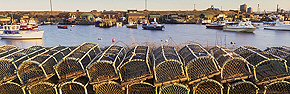 lobster pots at paddy's hole
