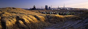 steelworks and dunes, south gare